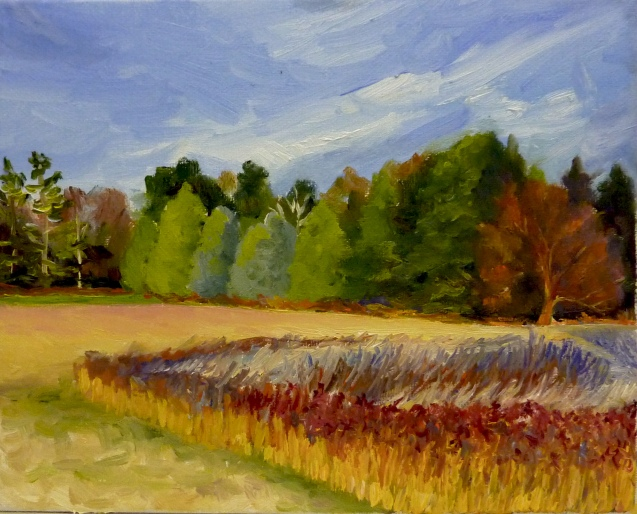 "Field of Patterns and Paths 8""x 10"" Oil"