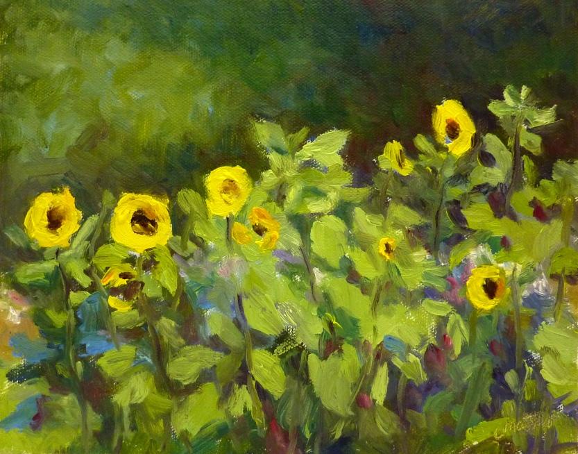 Sunflower Grove