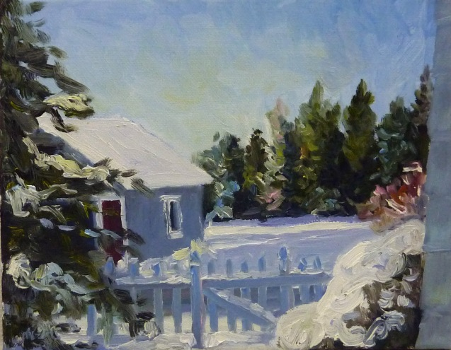 Backyard Snow and the Neighbors Yard